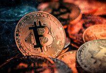 Predicts Bitcoin Disruption in Search Marketing